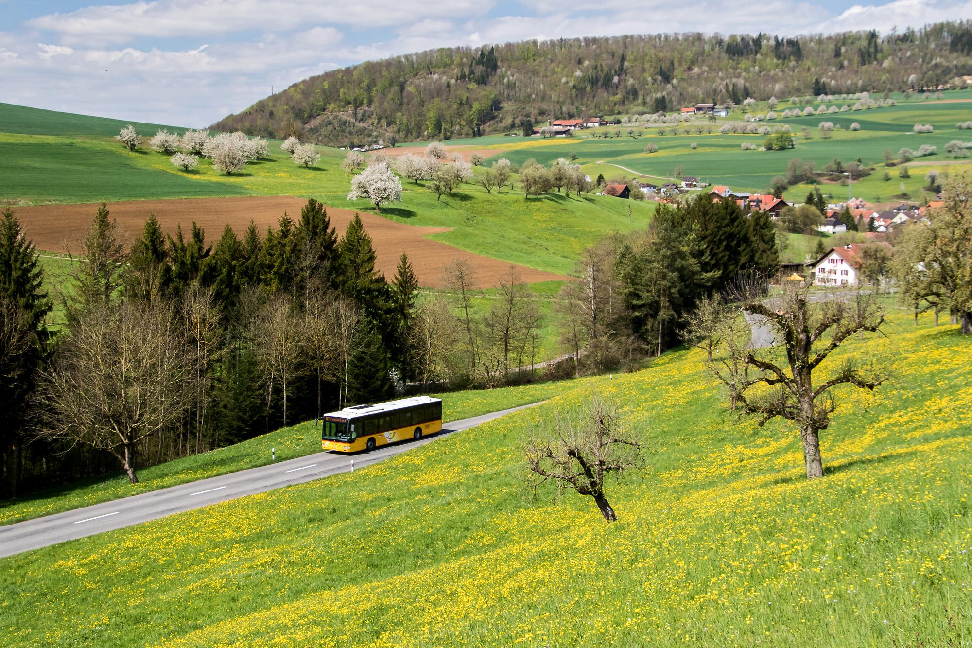 Die Schönheit des Mettauertals, hier mit einem Postauto des selben Kurses während der Stichfahrt nach Hottwil, Heimat dieses Postautohalters