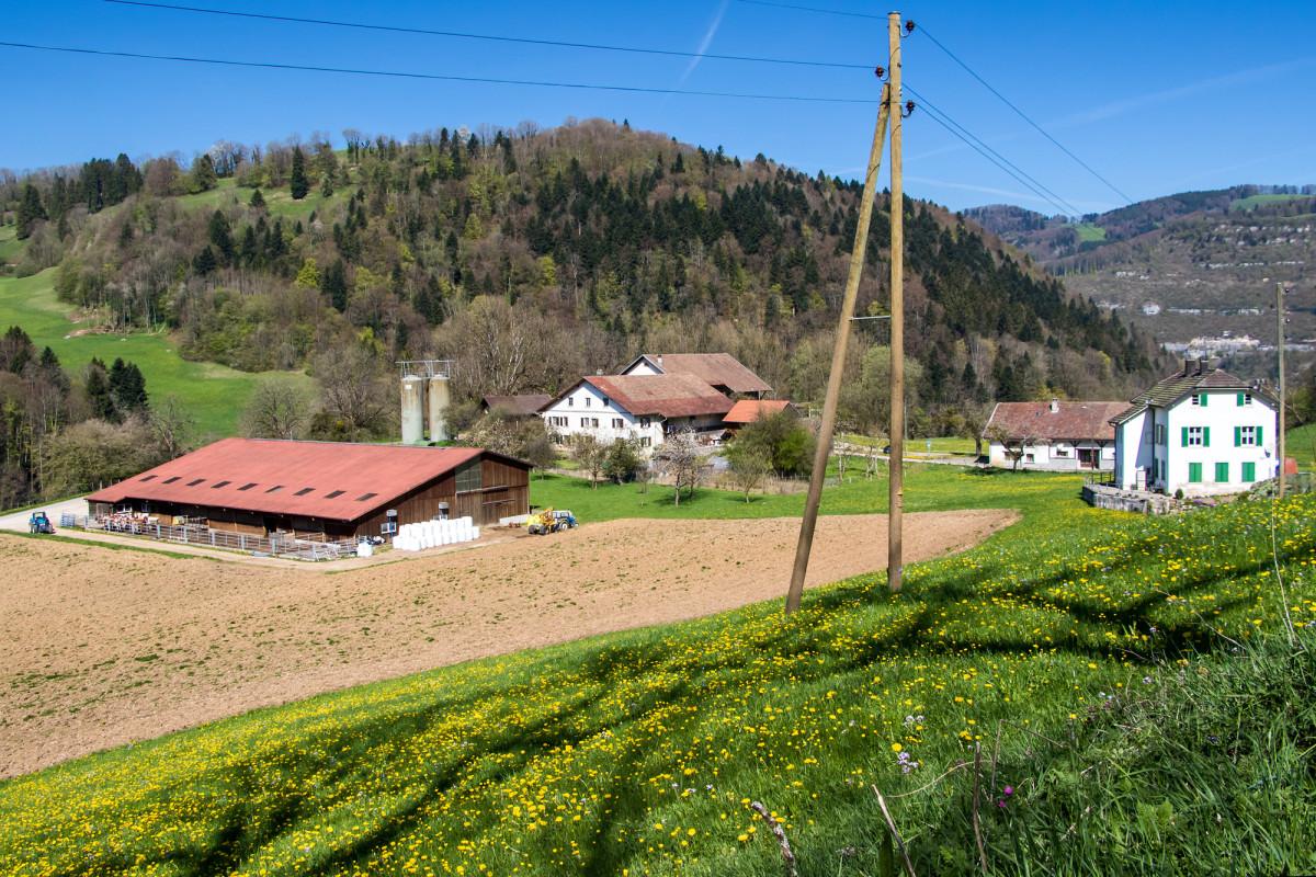 Einer der gefürchteten Bauerhöfe: Schön gelegen, trotzdem lieber weiträumig umgangen