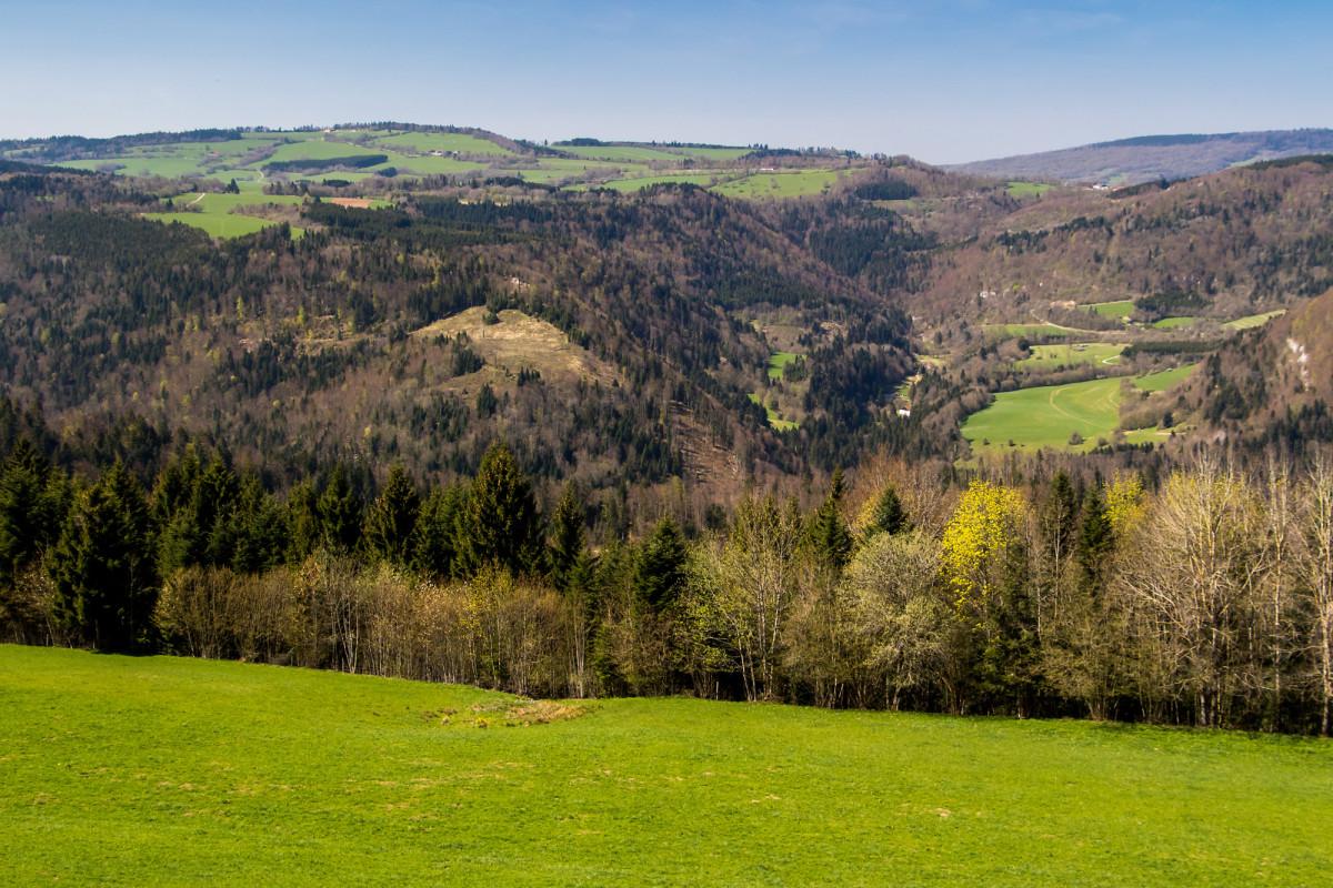 Blick auf die andere Seite des weit unten im Tal verlaufenden Doubs - willkommen in den spärlich besiedelten Freibergen!