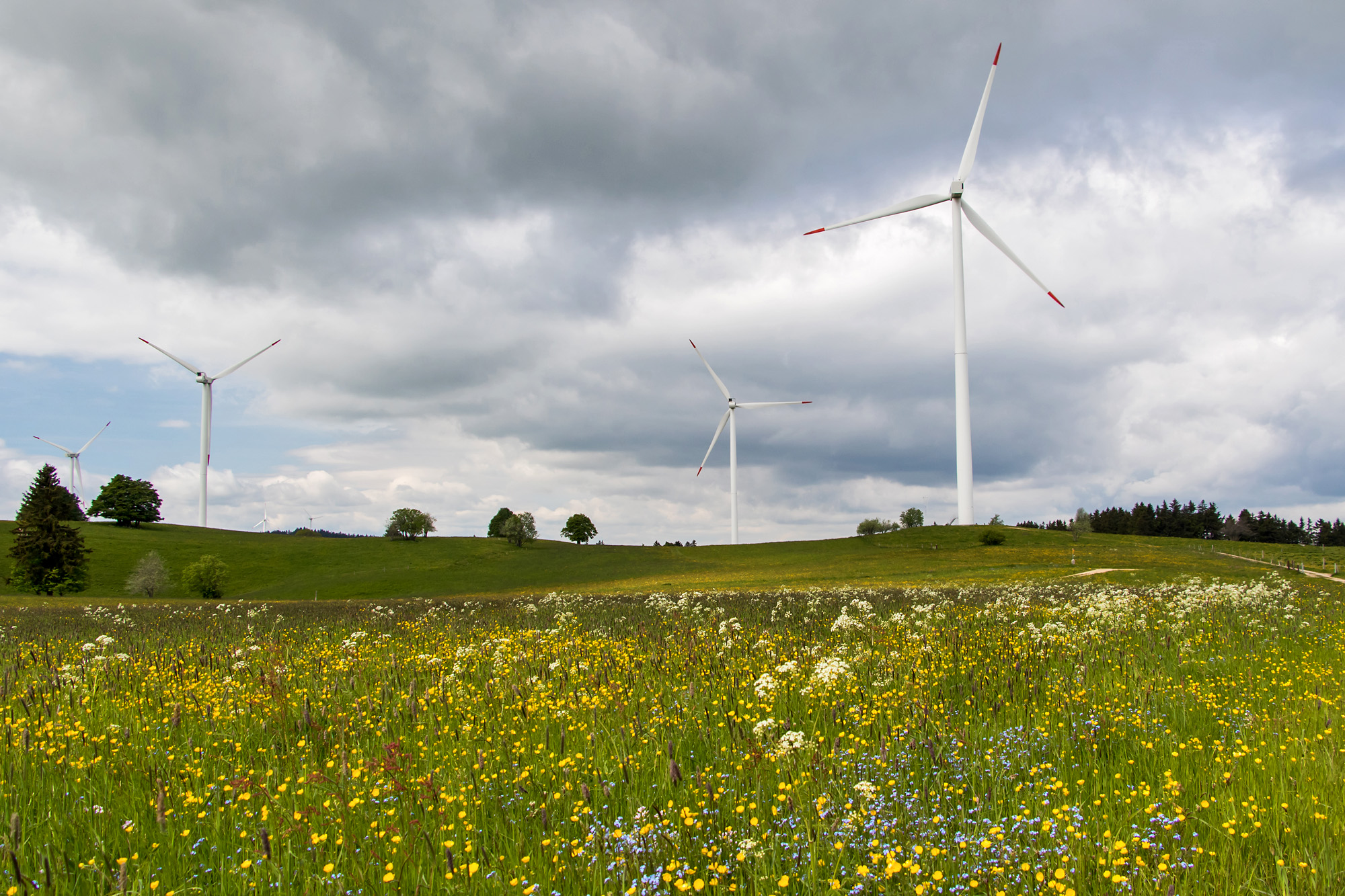 Der Windpark Mont Croisin (BE)