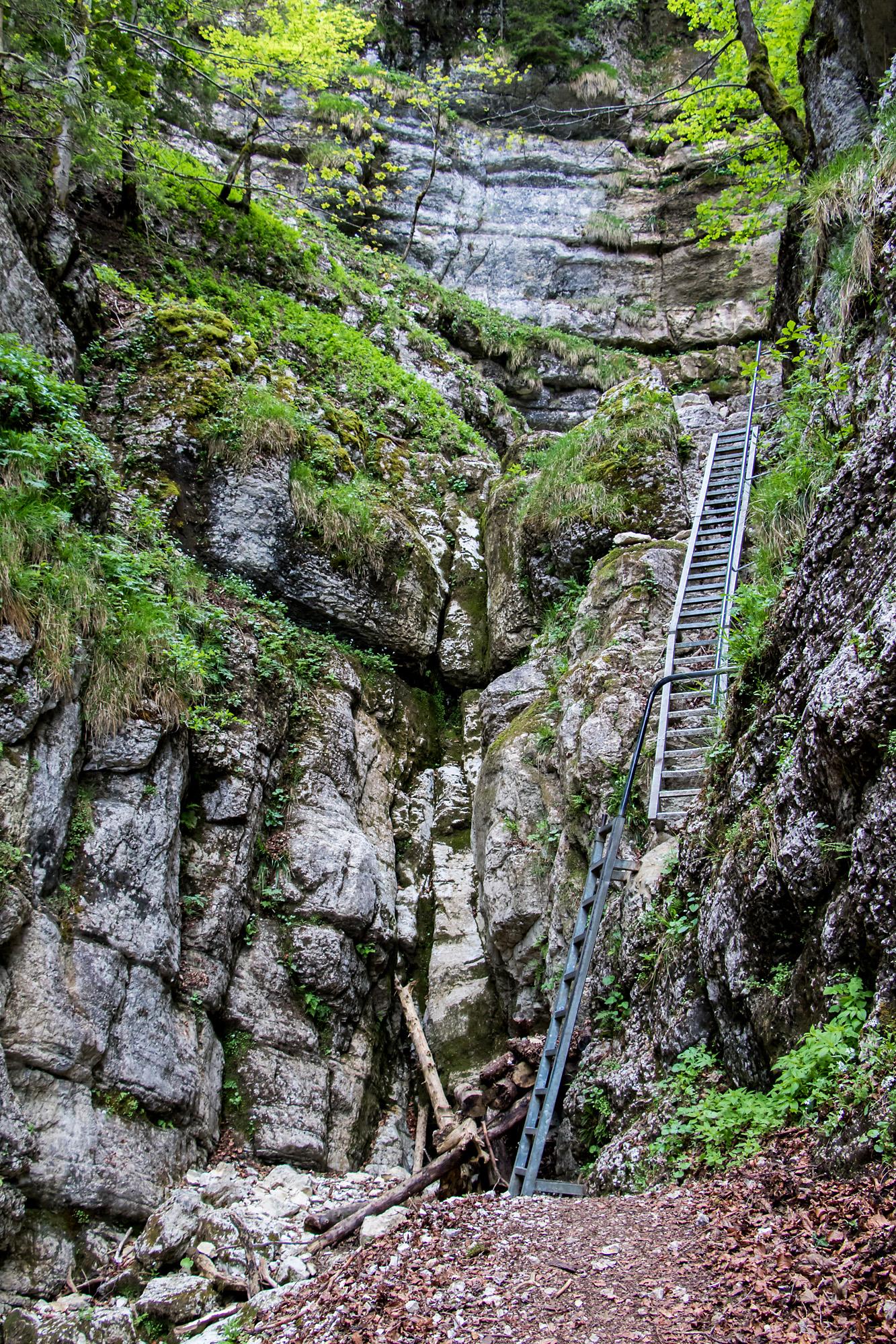 Dank den Leitern ist auch das unwegsame Gelände gut zu überwinden