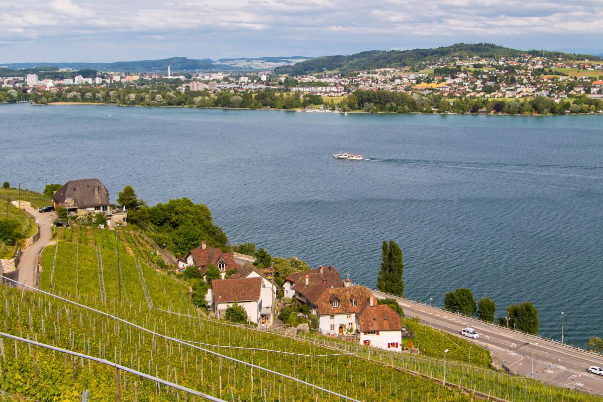 Blick auf den Bielersee bei Tüscherz (BE)