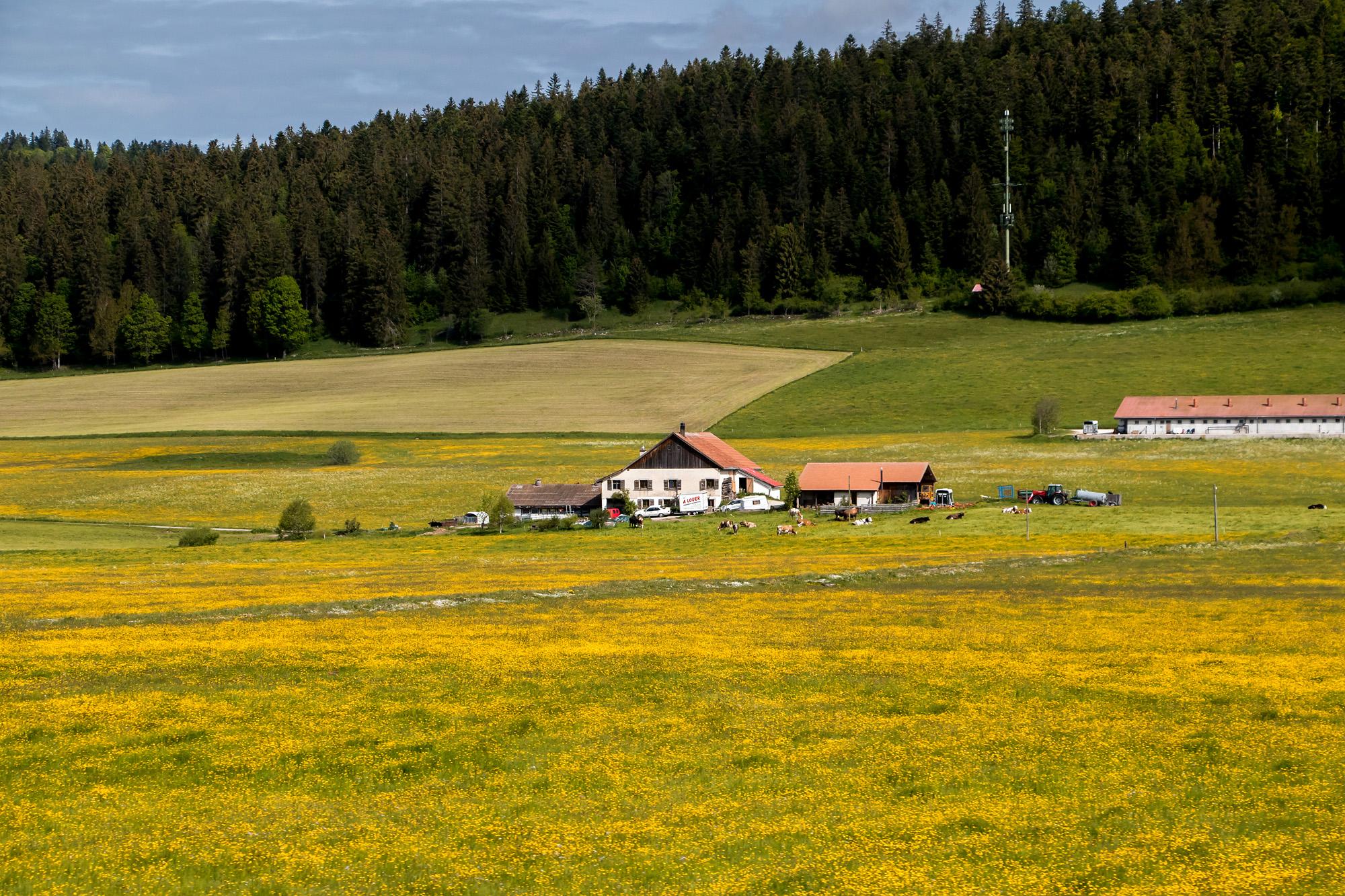 Ein weiteres typisches Bauernhaus inmitten der sehenswerten Landschaft