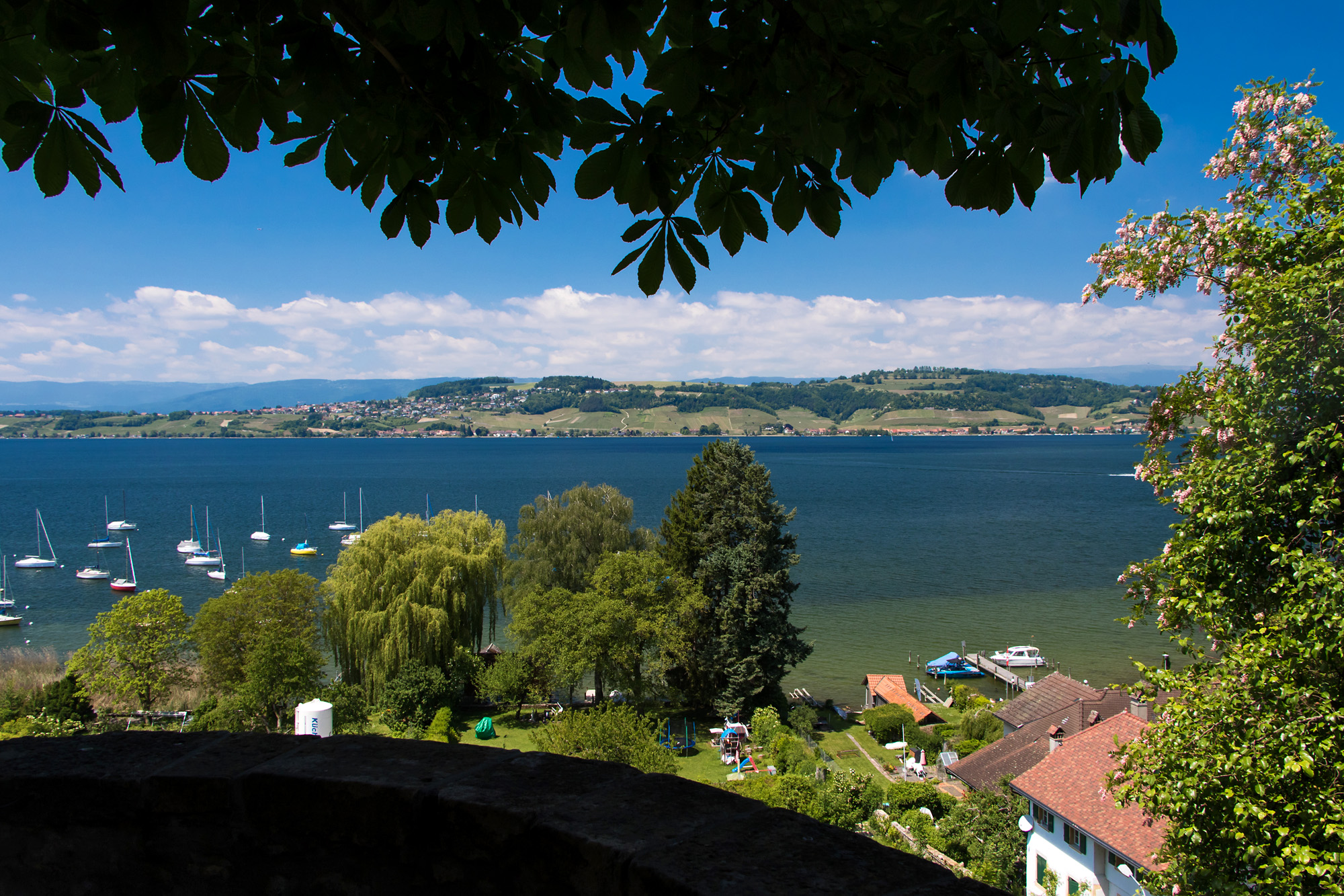 Aussicht vom Murtener Schlossgarten auf den Murtensee, FR