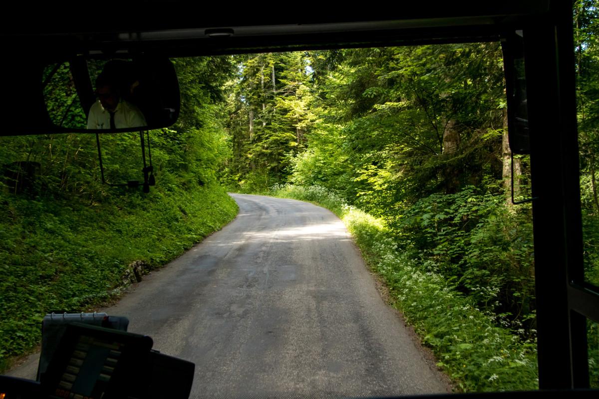 Auf schmalen Waldsträsschen in Richtung Yverdon