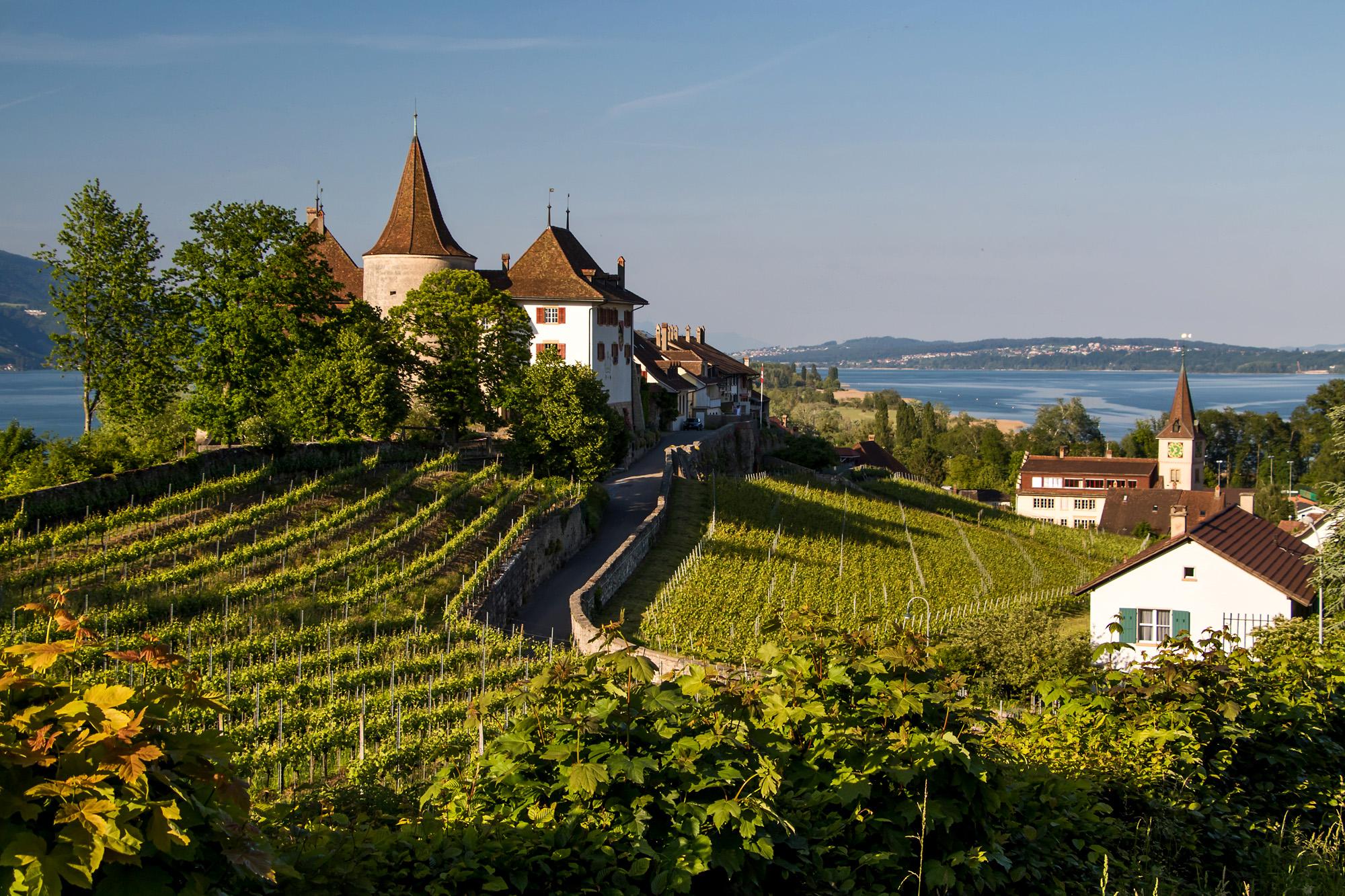 Schloss Erlach, BE