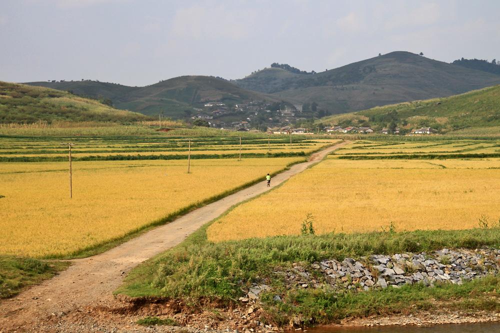http://www.planepics.org/reiseberichte/nordkorea/114.jpg